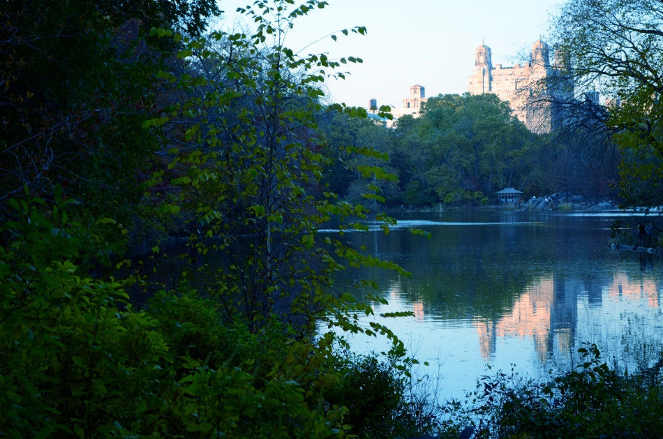 The Lake, Central Park West, NYC. 1/80 sec., f/5.6, ISO 160, 50mm.