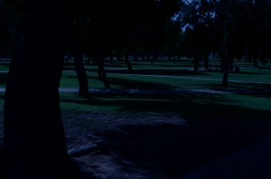"A faux ""night"" at the park. 1/320 sec., f/20, ISO 100, 35mm."