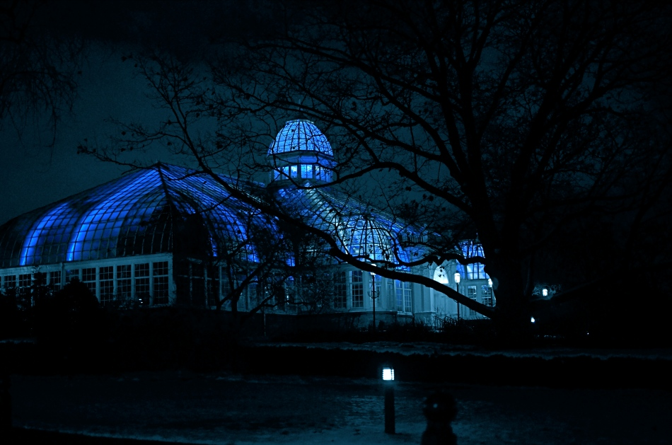 Franklin Park Conservatory, Columbus, Ohio. 1/40 sec., f/1.8, ISO 500, 35mm.