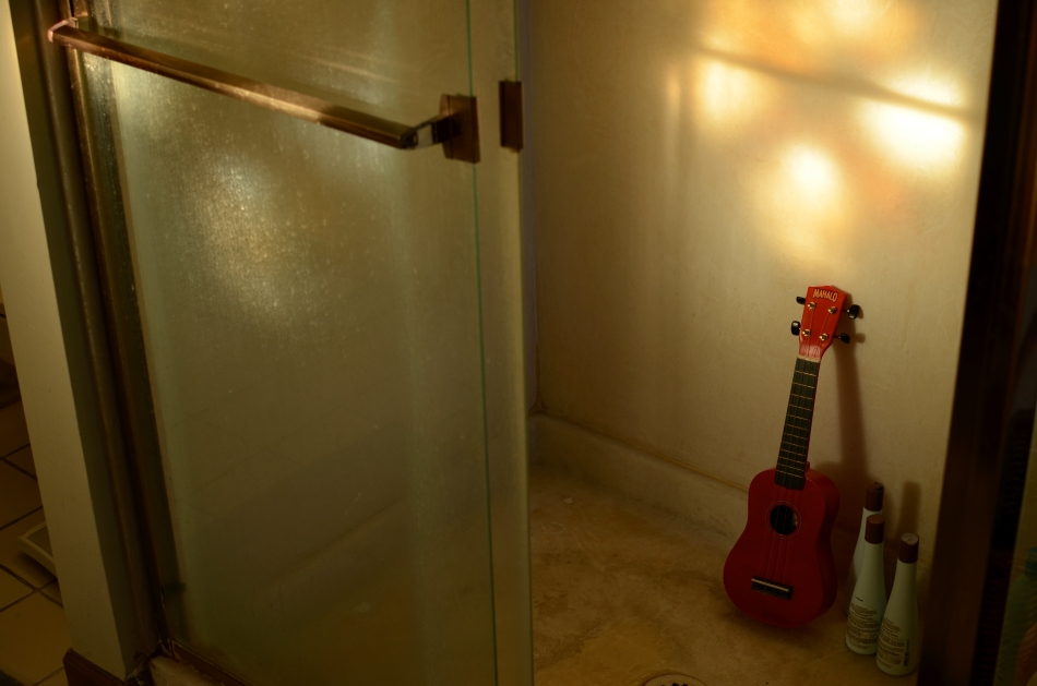 Uke can find good light showering down anywhere. 1/60 sec., f/4.5, ISO 100, 35mm.