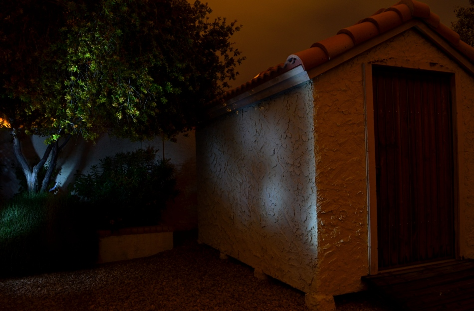 """No lighting in the back yard, unless you """"paint"""" it on: 30 sec., f/8, ISO 100, 18mm."""