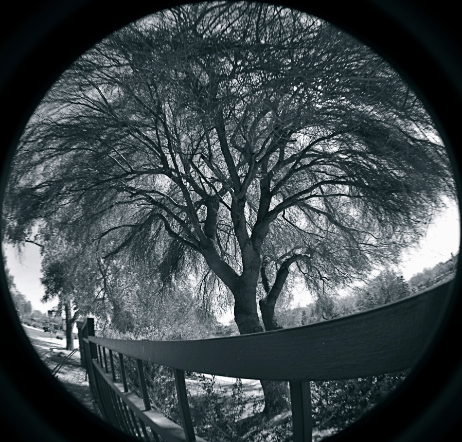 Cheap fisheye adaptors are a mixed bag optically, but they can convey a mood. 1/40 sec., f/11, ISO 100, 18mm.