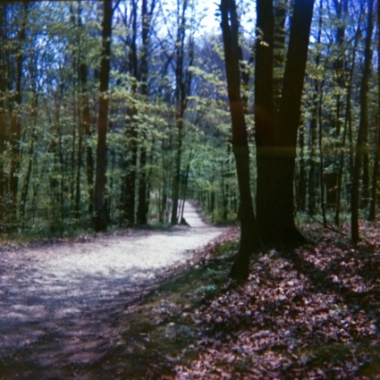 Blendon Woods, Columbus, Ohio, 1966. I usually had to shoot an entire roll of film to even come this close to making a useable shot.