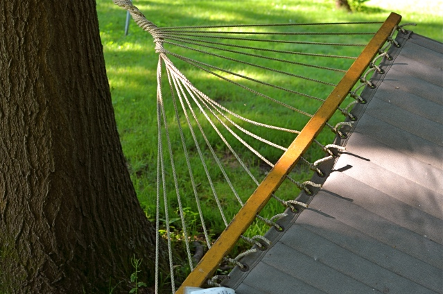 Do you need either the entire tree or the entire hammock to sell the idea in this picture?