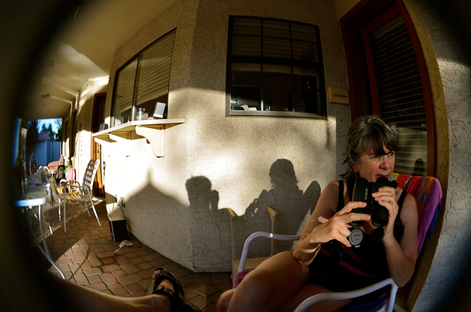 Fisheye lenses demonstrate what all wide-angles do: create an unreal look that can be managed and massaged to your ends.